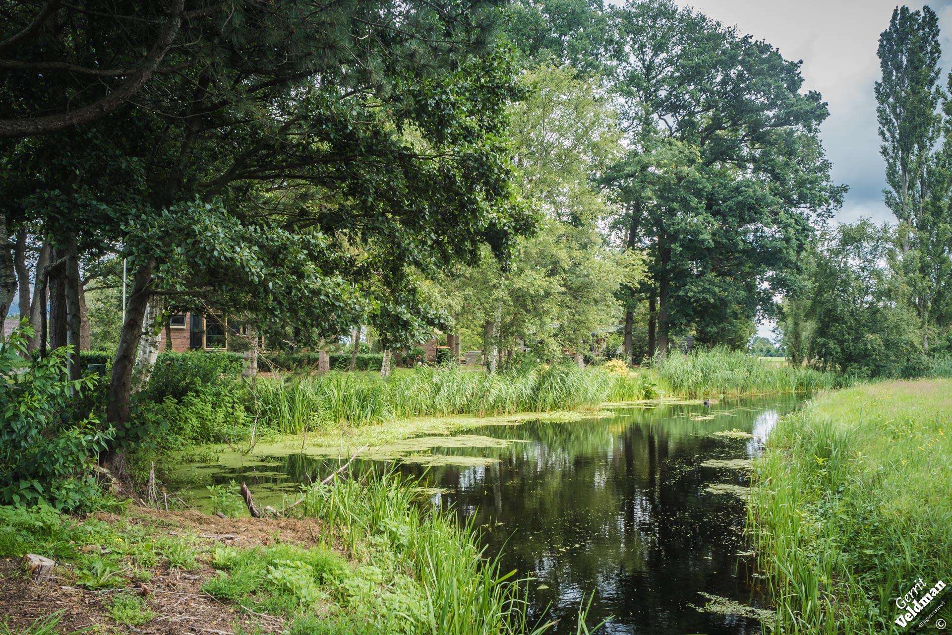 Vlotwijk