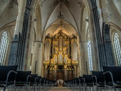 Schitger-orgel, Martinikerk, Groningen