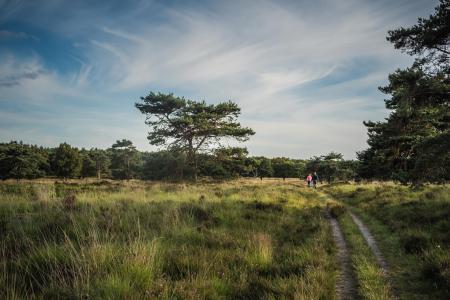 Wandelaars op het Groote Zand