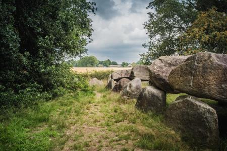 Hunebed D50 bij Noord-Sleen